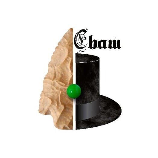 Logo CHAM - Centre d'histoire et d'archéologie de la Métabetchouane